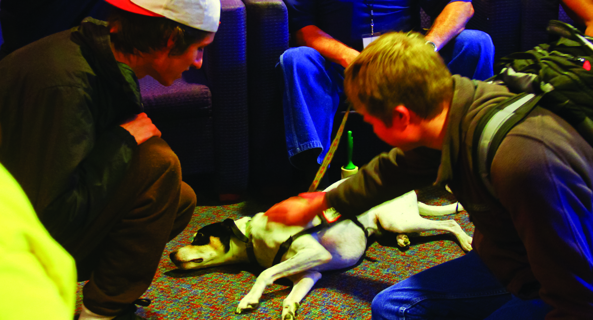 De-Stress Fest allows students to take a break during finals