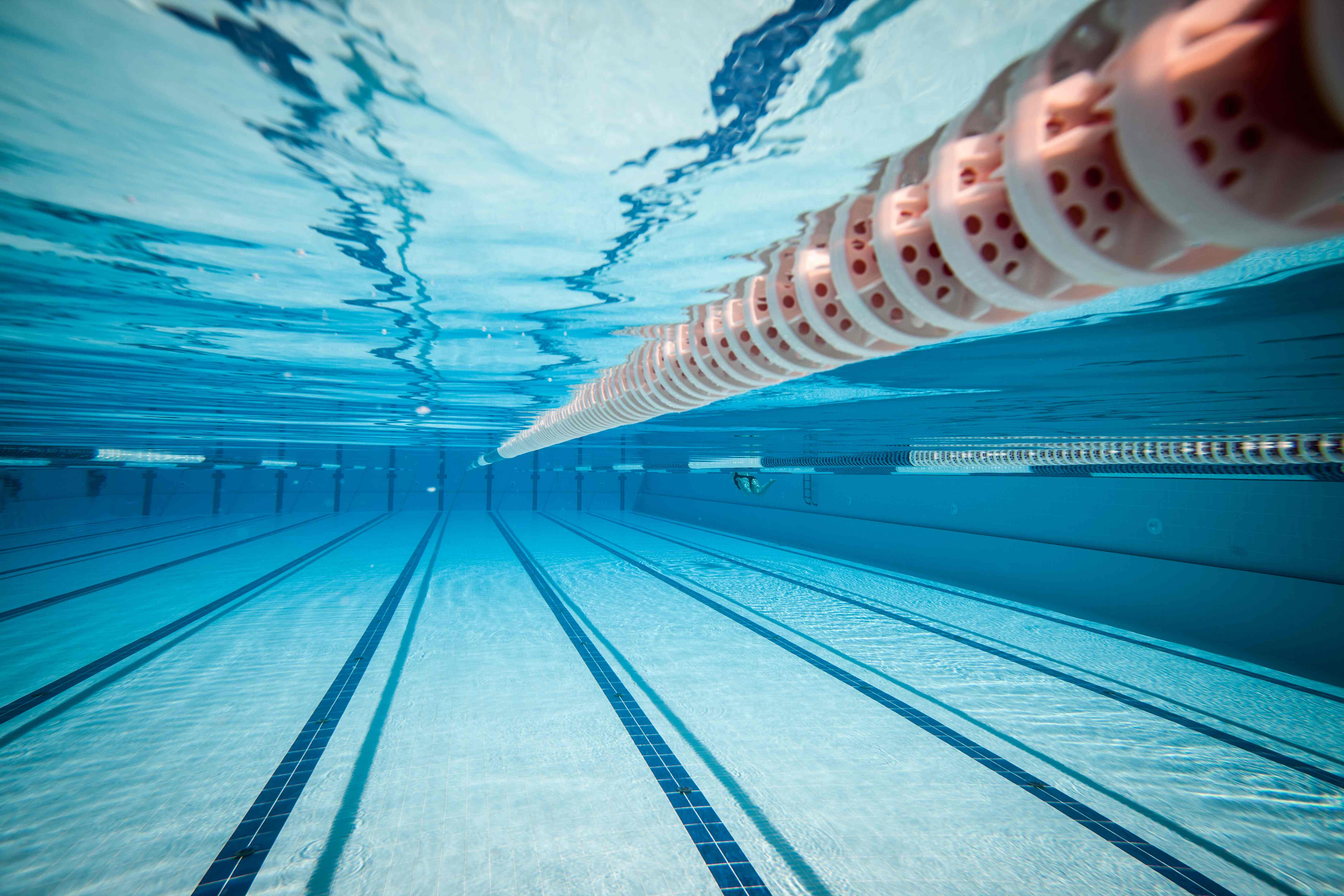 Swimming & Diving Archives - Gateway