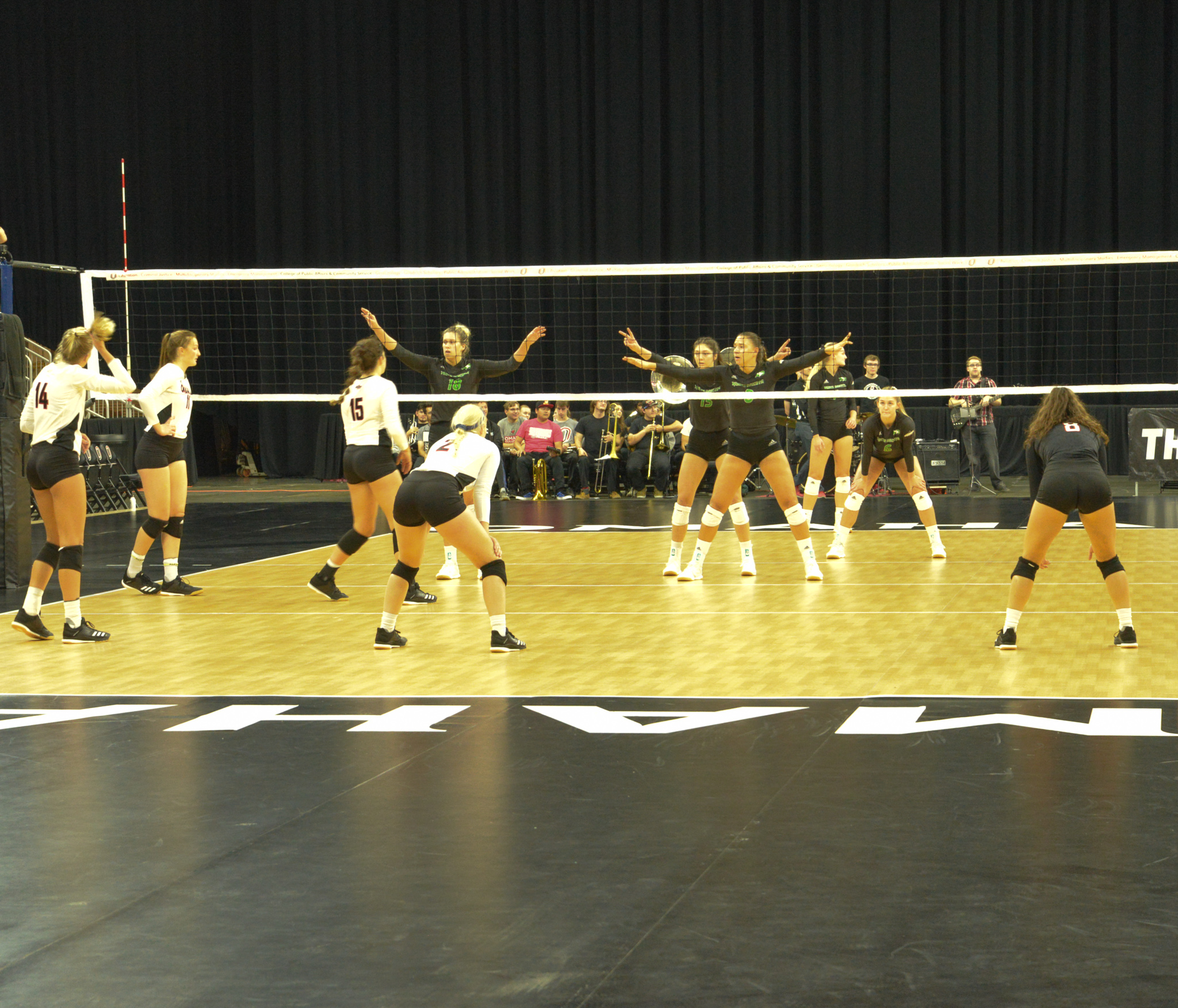 Volleyball players on the court