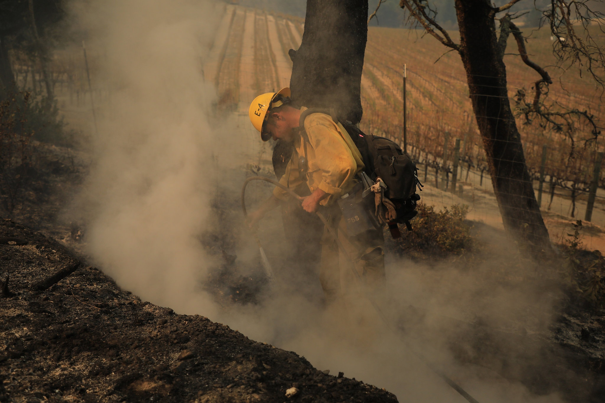 A photo of a fireman working in a forest fire