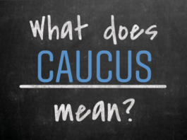 "Blackboard background. Words written in chalk, ""what does caucus mean?"""
