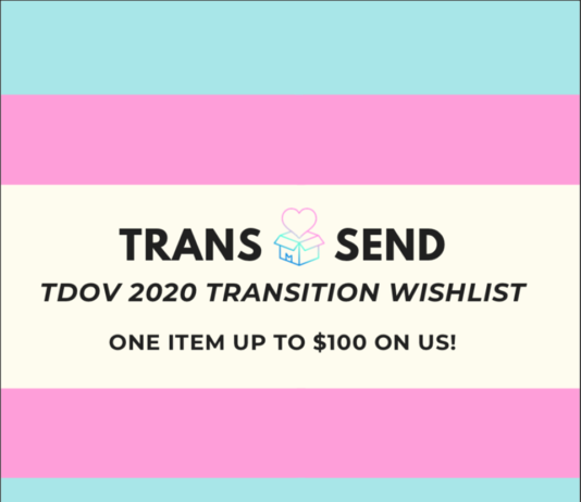 "Colors blue, pink, and white create the trans flag. The words ""Trans Send, TDOV 2020 transition wish list, one item up to $100 on us"" is centered in the middle of the image."