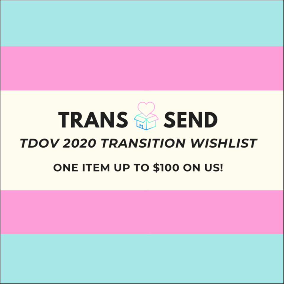 """Colors blue, pink, and white create the trans flag. The words """"Trans Send, TDOV 2020 transition wish list, one item up to $100 on us"""" is centered in the middle of the image."""